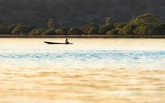 Fishing on Mutum River (ciwi.photography) Tags: mutumriver river fishing fischen fischer boat boot light licht water fluss pantanal brasilien brasil