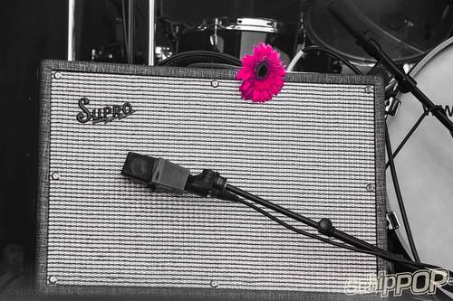 Schippop 45749527242_ace3620630  Schippop | Het leukste festival in de polder