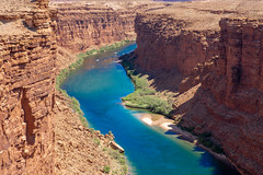 Colorado River as seen from Navajo Bridge, Marble Canyon AZ (Bert_T_TX) Tags: landscape desert utah arizona rock red moab bryce grand canyon arches colorado river marble water sedona rocks sky blue flower sand rocky travel adventure road highway view viewpoint kodachrome colorful history old bees plants flowers arch window windows orange green