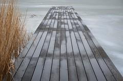 Sula Mörbischis (anuwintschalek) Tags: nikond7000 d7k 18140vr austria burgenland mörbisch mörbischamsee neusiedlersee thaw tauwetter see lake järv jää ice eis talv winter january 2019 seebadmörbisch paadisild sild steg kõrkjad schilf reeds