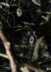 Time Hangs But By A Thread (peter.tully64) Tags: pocketwatch time clock tree night belsay enchanted