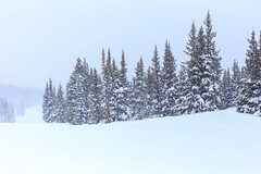 IMG_0042.jpg (Harmon Caldwell) Tags: canon 6d 40 mm snow mountain winter park colorado white landscape tree