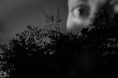 (Stella Trasforini) Tags: blackandwhite noir reflection ricohgrii monochrome minimal biancoenero