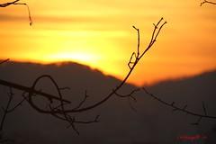 IMG_7564 (Pfluegl) Tags: graz österreich europe europa eu sunset chpfluegl chpflügl christian pflügl sonnenuntergang