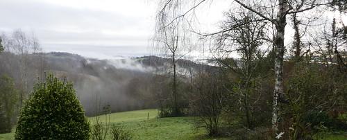 Matin d'hiver aux légères brumes, Bosdarros, Béarn, Pyrénées Atlantiques, Nouvelle-Aquitaine, France.