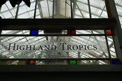Tropical Scotland (Dominic Sagar) Tags: amy arlen felsen friends glass sanfrancisco window glasshouse highlands pane tropic california unitedstates us