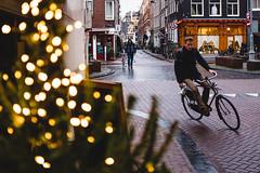 DSCF6709 (Roy Eldar) Tags: christmas netherland x100f amsterdam fuji holiday holland