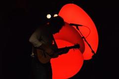 DSC_0030 (elisa.savio) Tags: vianney live concert nikon nikkor photographie