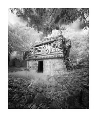 Sabacche, Edificio 5 II (Sandra Herber) Tags: infrared maya mayan mexico ruins sabacche5 yucatan