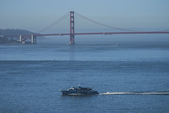 The Ferry and the Bridge (dcnelson1898) Tags: angelislandstatepark angelisland sanfranciscobay california island bay coast northerncalifornia statepark boat goldengate ferry