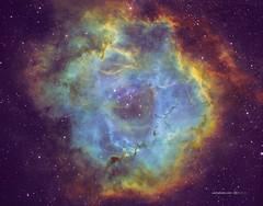 Rosetta Nebula (NGC2237) in HSTrgb (Carballada) Tags: astrophotography astrophoto redditastro astronomy deep space astro celestron zwo as1600mmc skywatcher ts sky qhy qhy5iii174 pixinsight galaxy galaxies deepspace telekopeservice narrowband hstpalette mach1 astrophysics astrometrydotnet:id=nova3161596 astrometrydotnet:status=solved
