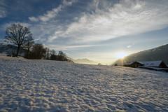Evening Sun in the Snow (Bephep2010) Tags: 2018 7markiii abend aeschi aeschibeispiez alpen alpha berg bern bäume herbst himmel ilce7m3 landschaft sel1635z schnee schweiz sonne sonnenschein sony sunbeam switzerland alps autumn evening fall landscape mountain sky snow sun trees ⍺7iii kantonbern ch