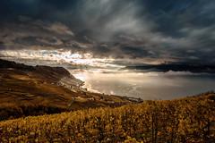 J'habite un beau pays... (Valentin le luron) Tags: nikon 800 e paysage ciel vigne nuage lac léman unesco lavaux suisse romandie vaud lumière yves paudex lausanne