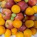 Früchte - Äpfel, Mandarinen und Weintrauben