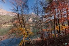 Lago di Ledro (capellini.chiara) Tags: paesaggio landscape montagne peace colori foglie foliage autumn autunno naturelovers naturephotography natura trentinoaltoadige ledro'slake