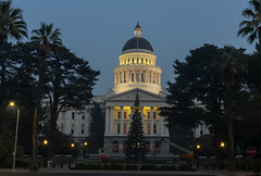 The State Capital and Unlit Tree (dcnelson1898) Tags: sacramento sacramentocounty capitalmall statecapital california centralvalley usa america unitedstates nightphotography