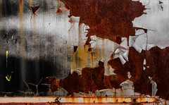 Polar Vortex (Junkstock) Tags: abstract abstraction arizona corrosion corroded craquelure decay decayed distressed paint peelingpaint rust rusty rusted textures texture