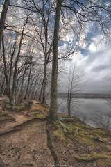 The path morning fog. (JOSE E REYES) Tags: nature nikon woods lakes