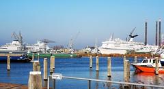 Steiger 2 (Peter ( phonepics only) Eijkman) Tags: amsterdam city haven harbour ships schepen scheepswerf schip water noordzeekanaal ij canals nederland netherlands nederlandse noordholland holland