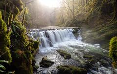 Le Dessoubre - Laval-le-Prieuré (25) - France (Romain VENOT) Tags: cascades consolationmaisonettes doubs france franchecomté hiver water waterfalls waterscape winter dessoubre lavalleprieuré
