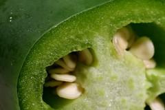 jalapeno_7Dii3578 (cold_penguin1952) Tags: macromondays green jalapeno chile