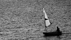 One (patrick_milan) Tags: sail black white sea mer boat optimist sidelit water cof043 cof043dmnq cof043mark cof043mari cof043ally
