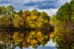 47:52-2 Fall Reflections (Woodlands Photog) Tags: fall color lake reflections the woodlands texas shadowbend nature trees