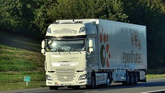 P - TransWhite >eporifrutas< DAF XF 106 SSC (BonsaiTruck) Tags: transwgite eporifrutas daf lkw lastwagen lastzug truck lorry camion caminhoes