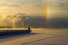 Ghost on the Shore (Matt Champlin) Tags: merrychristmas christmas holiday morning life nature tree skaneateles canon 2017 frost cold chilly frosty landscape peaceful colorful rainbow sundog sun dog dawn archive break awesome amazing snow ice lake flx cny