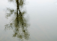 Reflection (Kat Hatt) Tags: mpt682 matchpointwinner