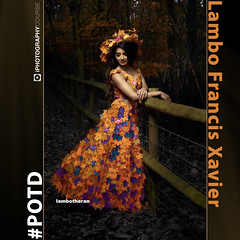 Lambo Francis Xavier #POTD (iPhotographyCourse) Tags: orange leaves red yellow portrati portrait fashion hat dress couture fence wood woodland flash autumn iphotography photographytutorial photographer photography photoshop photomanipulation elearning exposure onlinelearing online onlinephotography onlineclass distancelearning editing learn learnphotography learning course class photographygame potd