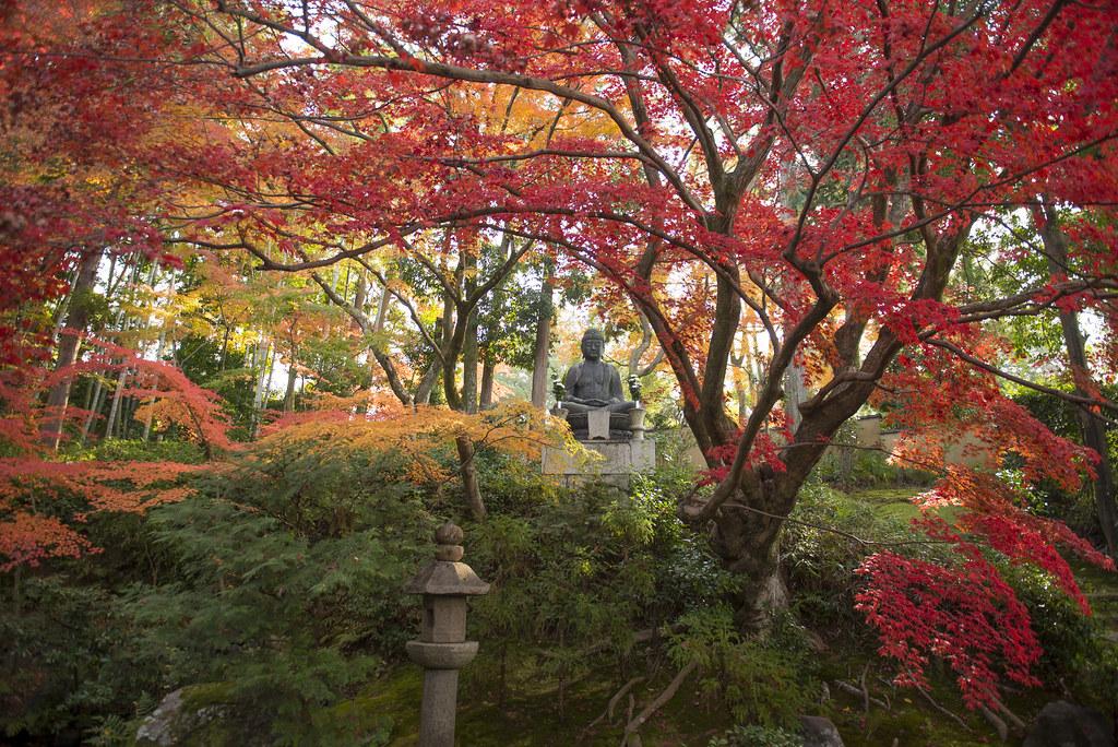 The World S Newest Photos Of Japanische Flickr Hive Mind