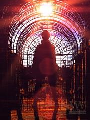 Lady In A Cage (Will Vaultz) Tags: equinox positivity focusonwhatmattersmost solesurvivor ultraviolet marooned spacetraveler newland alternateuniverse thematrixisreal thematrix glitchinthematrix sunlight lastmanonearth baywindow controlroom timetravel scifiart scifi scififantasy movieposters willvaultzphotography coverart digitalart thetruthisoutthere reclusive nothinglikethesun thewatchers thewatchersonthewall
