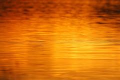 Sun Reflections (Yorkshire Pics) Tags: 1012 10122018 10thdecember 10thdecember2018 fairburn fairburnsunrise fairburnings fairburningssunrise lake fairburnlake reflections reflectionsinwater reflectionsoverwater reflectionsacrosswater wetreflections ferrybridge ferrybridgepowerstation weather