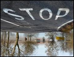 Stop (claudiomantova1) Tags:
