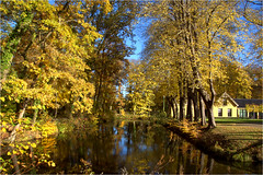 a beautiful autumn day........... (atsjebosma) Tags: bos bomen lucht nienoord countryestate landgoed leek groningen thenetherlands november atsjebosma 2018 sunlight zonlicht