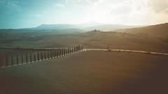 Toscana Mavic pro (romain.tenin) Tags: toscana mavicpro polarpro italy tuscany landscape sunset green travel location drone lines europe high angle cypress tree fields dji mavic aerial