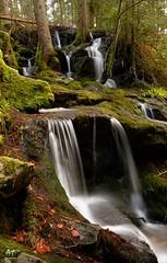 Ruisseau de la Pissoire (Vosges, France)