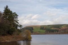 IMG_4276 (del.hickey) Tags: ponstsicill reservoir wales