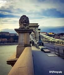 #Budapest #d_pexli #photography #photo #travel #Europe #bridge (kazerakias_serres) Tags: europe bridge dpexli photography budapest photo travel