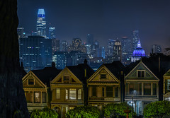 propinquity (pbo31) Tags: bayarea california nikon d810 night dark black color january 2019 boury pbo31 sanfrancisco city urban alamosquare park skyline over trees salesforce cityhall dome paintedladies victorians architecture panorama large stitched panoramic houses neighborhood depthoffield
