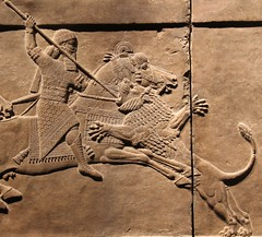 Ashurbanipal (richardr) Tags: ashurbanipal assyria assyrian ancient relief bloomsbury britishmusuem museum england english britain british greatbritain uk unitedkingdom europe european old history heritage historic lion