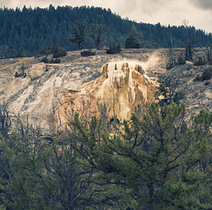 Mammoth - Fall scenes from Yellowstone National Park, WY, USA (The Shared Experience) Tags: yellowstonenationalpark 2016 a6300 sonya6300 sonydslr nps nationalparks nps100 hotsprings geyser wild nature landscapes wildlife usa wy