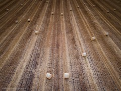 Straw Bales On Parched Land (Richard Walker Photography) Tags: fields landscape nature bicester bales summer drone lines crop oxfordshire