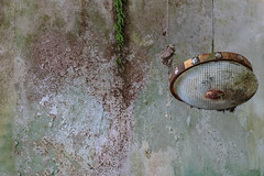 (bananahh) Tags: urbex ue decay abandoned verlassen leer verfall verfallen lampe oncewashome rotten forgotten derelict