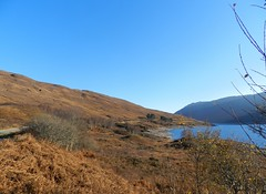 Loch Cluanie, Highlands of Scotland, Nov 2018 (allanmaciver) Tags: loch cluanie highlands scotland bracken brown autumn blue sky water hillside allanmaciver
