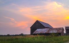 Michigan Sunset, 2012 (marylea) Tags: jun28 farm sunset 2012 summer michigan rural barn evening semichigan southeasternmichigan washtenawcounty iphone