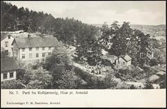 Postkort fra Agder (Avtrykket) Tags: barn bolighus hus postkort skog vei arendal austagder norway nor