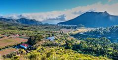 Santiago del Teide (etoma/emiliogmiguez) Tags: santiago del teide tenerife islascanarias valle arriba montaña nubes árboles