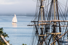 09-3527 (George Hamlin) Tags: maine boothbay harbor sailing vessel boat square rigger water fog building structure evening photo decor george hamlin photography